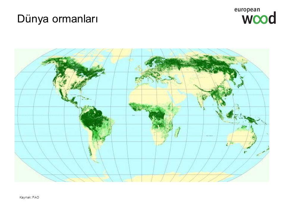 Dünya ormanları Kaynak: FAO