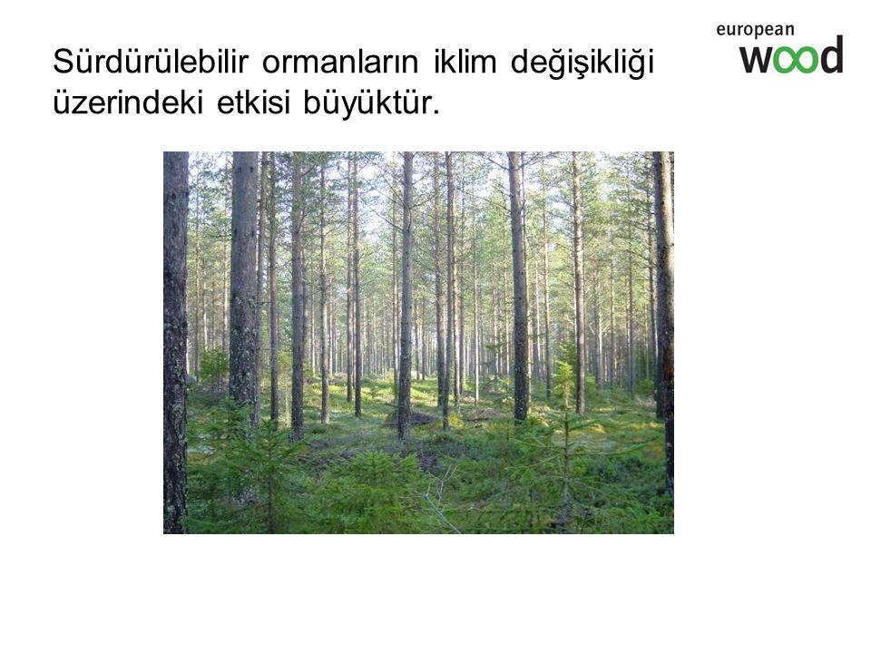 Sürdürülebilir ormanların iklim değişikliği üzerindeki etkisi büyüktür.