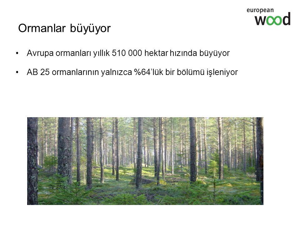 Ormanlar büyüyor