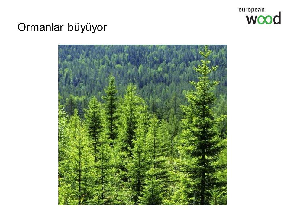 Gelecek nesiller için orman miktarının korunması Biyolojik çeşitliliğe saygı Avrupa ormanlarının %80'i yazılı yönetim planları kapsamındadır.