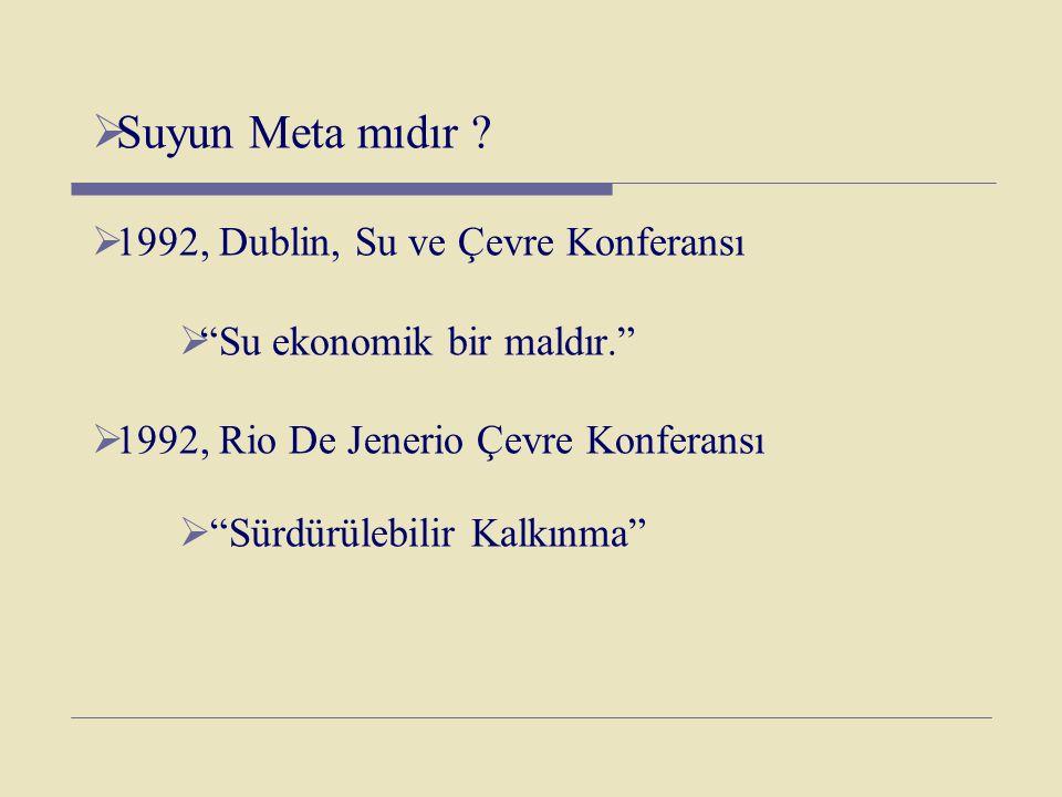 """ Suyun Meta mıdır ?  1992, Dublin, Su ve Çevre Konferansı  """"Su ekonomik bir maldır.""""  1992, Rio De Jenerio Çevre Konferansı  """"Sürdürülebilir Kalk"""