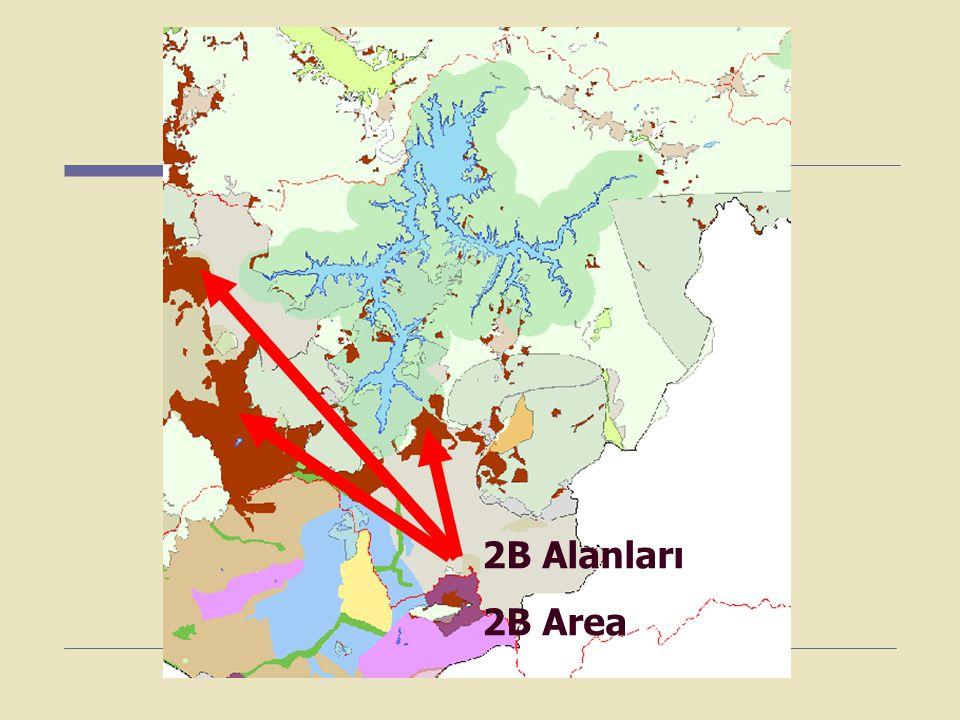 2B Alanları 2B Area