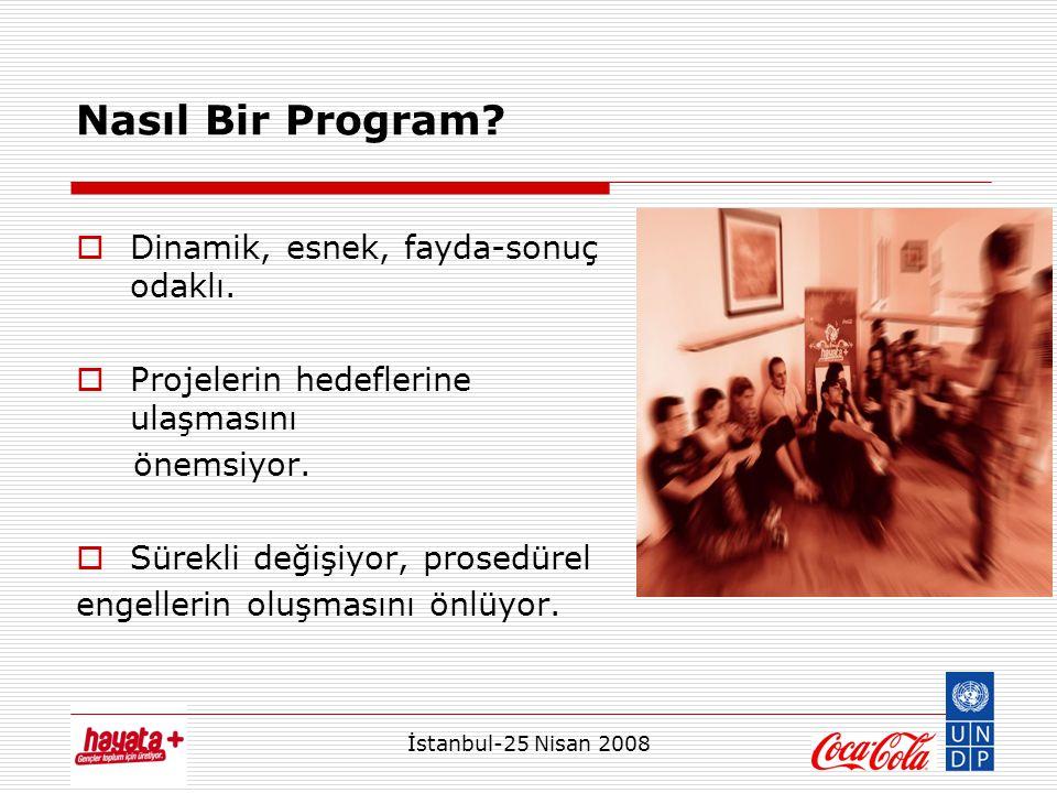 İstanbul-25 Nisan 2008  Dinamik, esnek, fayda-sonuç odaklı.  Projelerin hedeflerine ulaşmasını önemsiyor.  Sürekli değişiyor, prosedürel engellerin