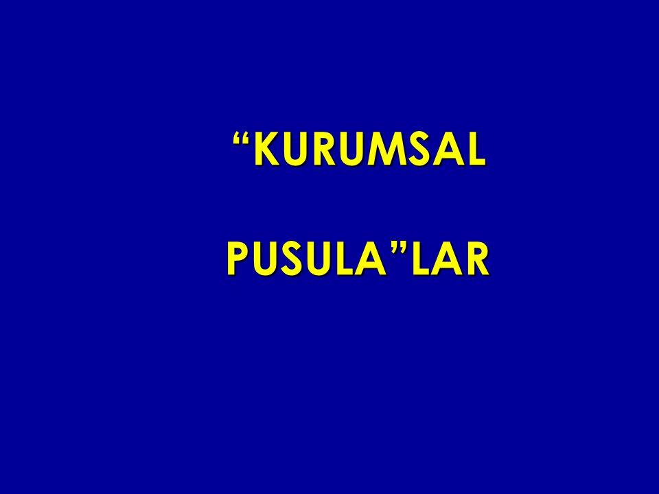 KURUMSAL PUSULA LAR