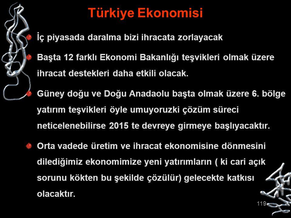 119 Türkiye Ekonomisi İç piyasada daralma bizi ihracata zorlayacak Başta 12 farklı Ekonomi Bakanlığı teşvikleri olmak üzere ihracat destekleri daha et