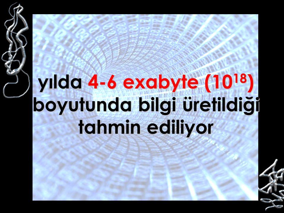 yılda 4-6 exabyte (10 18 ) boyutunda bilgi üretildiği tahmin ediliyor