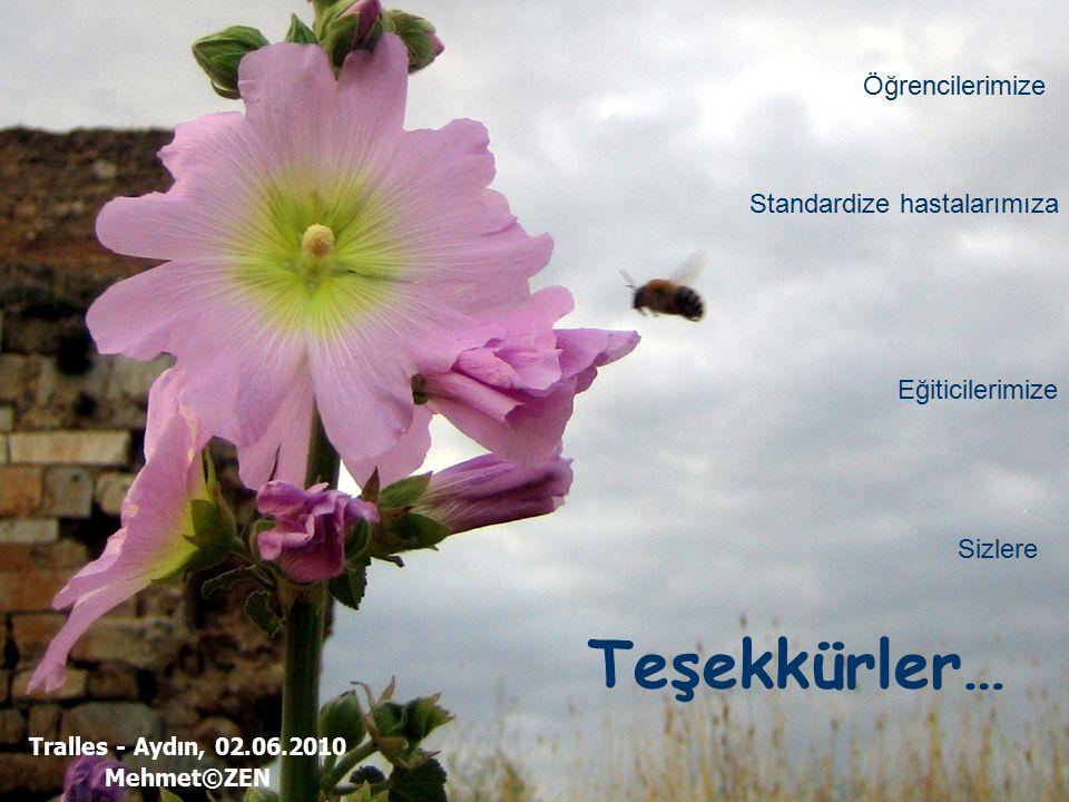 Tralles - Aydın, 02.06.2010 Mehmet©ZEN Teşekkürler… Öğrencilerimize Standardize hastalarımıza Eğiticilerimize Sizlere