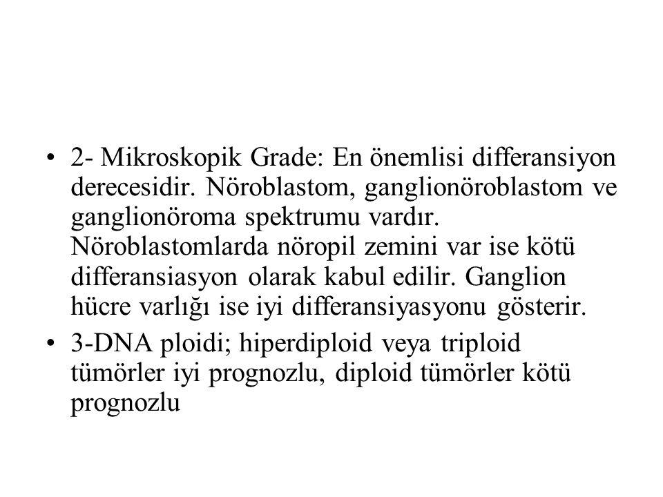 2- Mikroskopik Grade: En önemlisi differansiyon derecesidir. Nöroblastom, ganglionöroblastom ve ganglionöroma spektrumu vardır. Nöroblastomlarda nörop