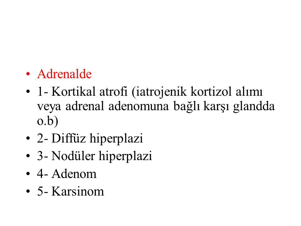 Adrenalde 1- Kortikal atrofi (iatrojenik kortizol alımı veya adrenal adenomuna bağlı karşı glandda o.b) 2- Diffüz hiperplazi 3- Nodüler hiperplazi 4-