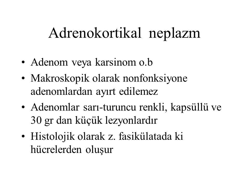 Adrenokortikal neplazm Adenom veya karsinom o.b Makroskopik olarak nonfonksiyone adenomlardan ayırt edilemez Adenomlar sarı-turuncu renkli, kapsüllü v