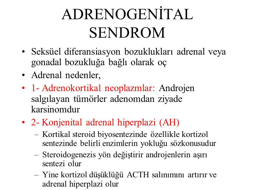 ADRENOGENİTAL SENDROM Seksüel diferansiasyon bozuklukları adrenal veya gonadal bozukluğa bağlı olarak oç Adrenal nedenler, 1- Adrenokortikal neoplazml