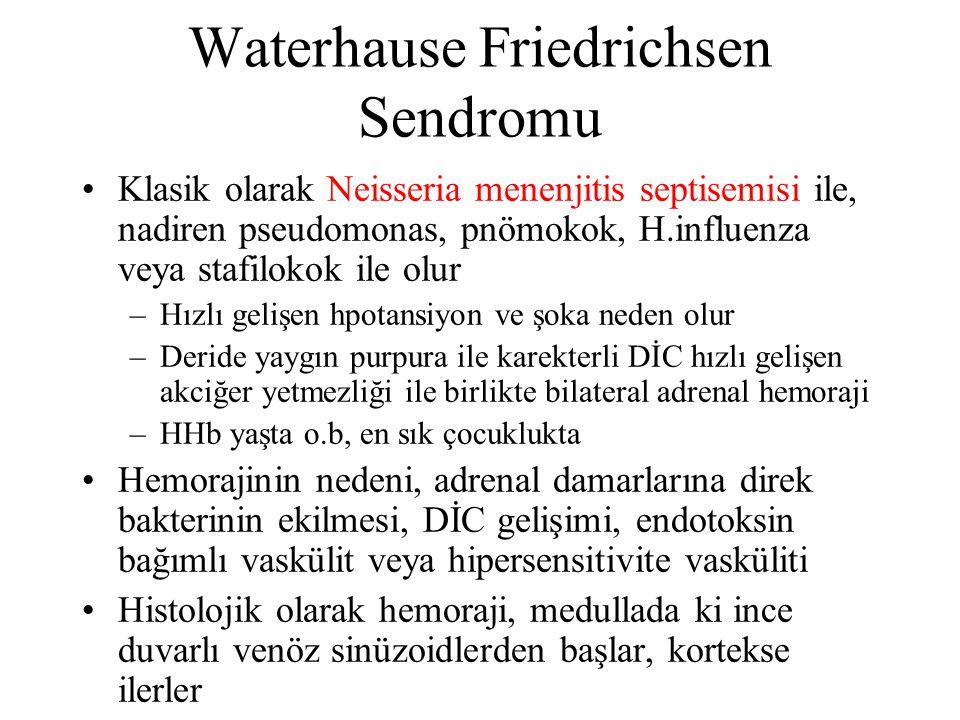 Waterhause Friedrichsen Sendromu Klasik olarak Neisseria menenjitis septisemisi ile, nadiren pseudomonas, pnömokok, H.influenza veya stafilokok ile ol