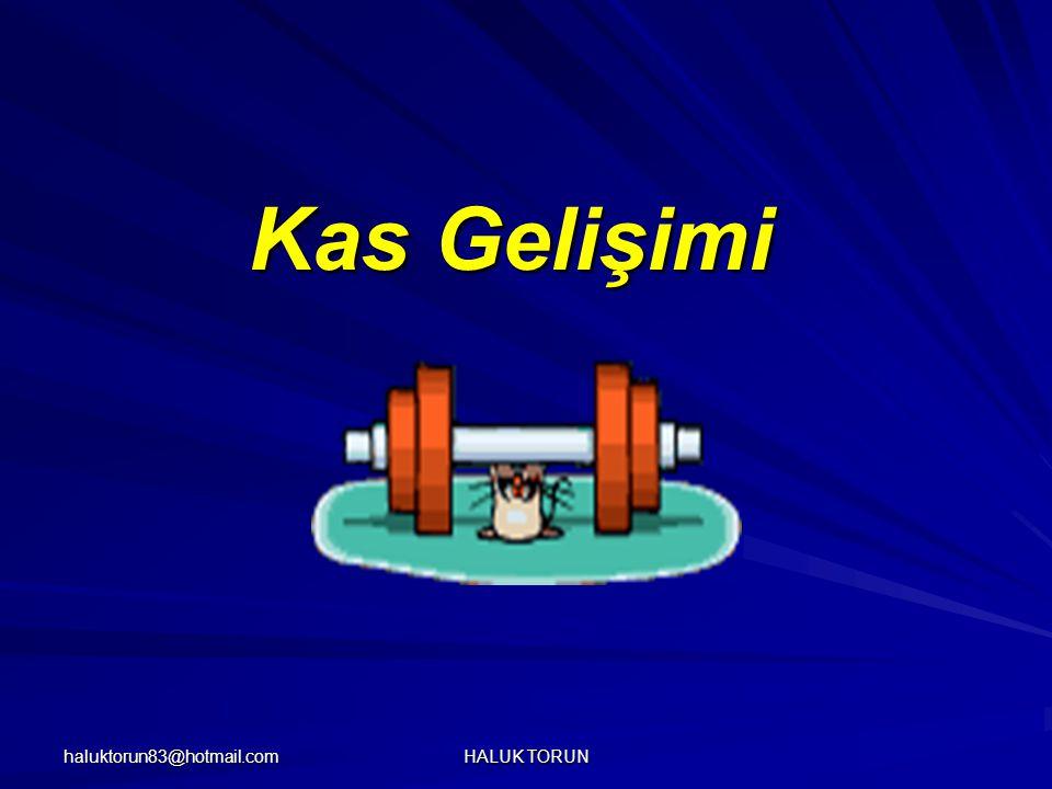 haluktorun83@hotmail.com HALUK TORUN Kas Gelişimi