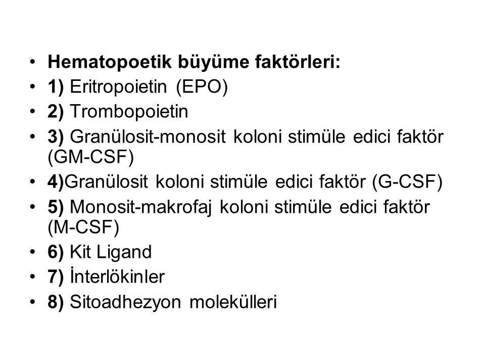 Hematopoetik büyüme faktörleri: 1) Eritropoietin (EPO) 2) Trombopoietin 3) Granülosit-monosit koloni stimüle edici faktör (GM-CSF) 4)Granülosit koloni