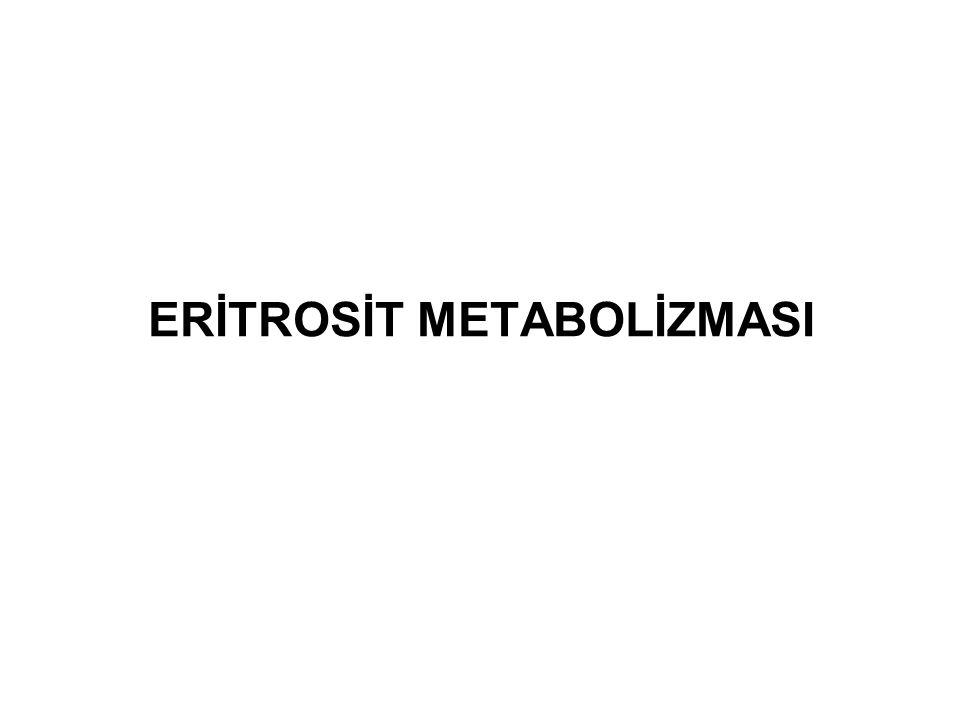 ERİTROSİT METABOLİZMASI
