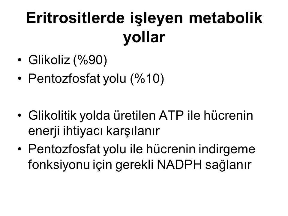 Eritrositlerde işleyen metabolik yollar Glikoliz (%90) Pentozfosfat yolu (%10) Glikolitik yolda üretilen ATP ile hücrenin enerji ihtiyacı karşılanır P