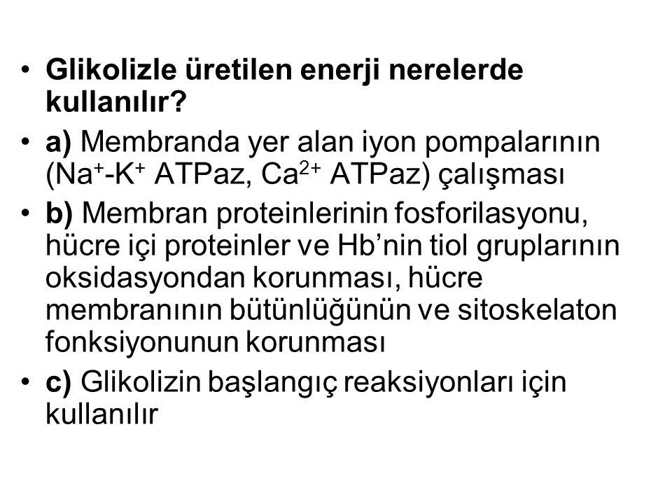 Glikolizle üretilen enerji nerelerde kullanılır? a) Membranda yer alan iyon pompalarının (Na + -K + ATPaz, Ca 2+ ATPaz) çalışması b) Membran proteinle