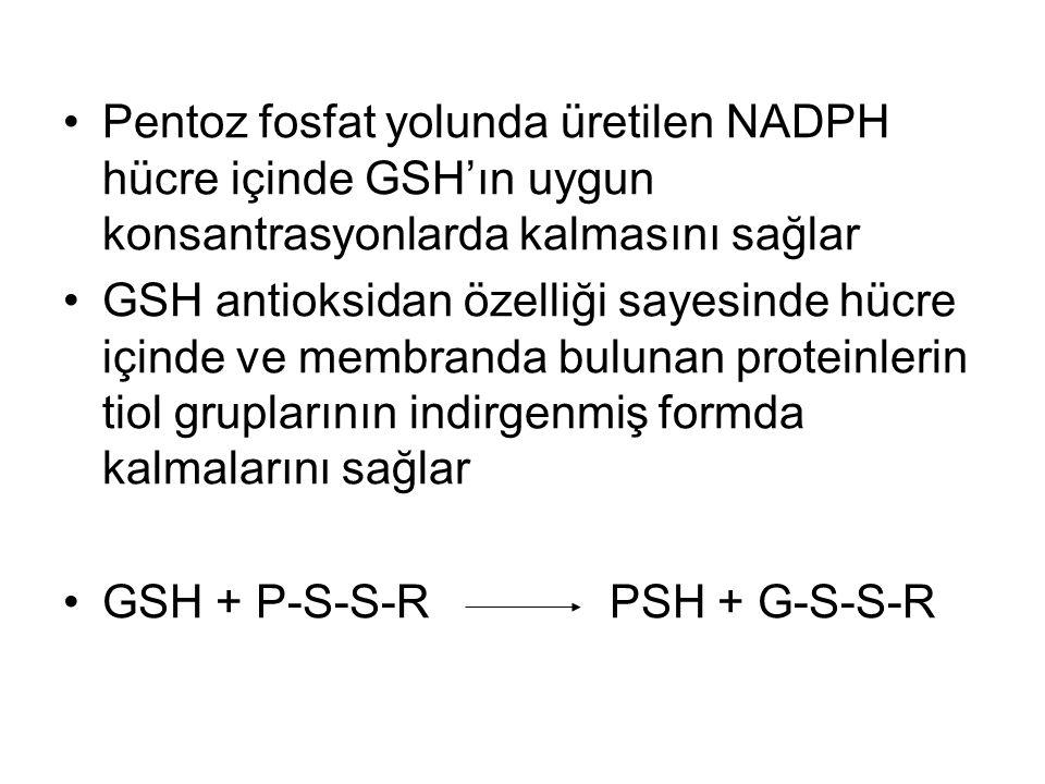 Pentoz fosfat yolunda üretilen NADPH hücre içinde GSH'ın uygun konsantrasyonlarda kalmasını sağlar GSH antioksidan özelliği sayesinde hücre içinde ve