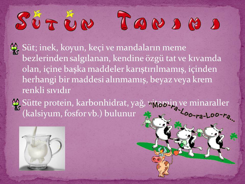 Süt; inek, koyun, keçi ve mandaların meme bezlerinden salgılanan, kendine özgü tat ve kıvamda olan, içine başka maddeler karıştırılmamış, içinden herh