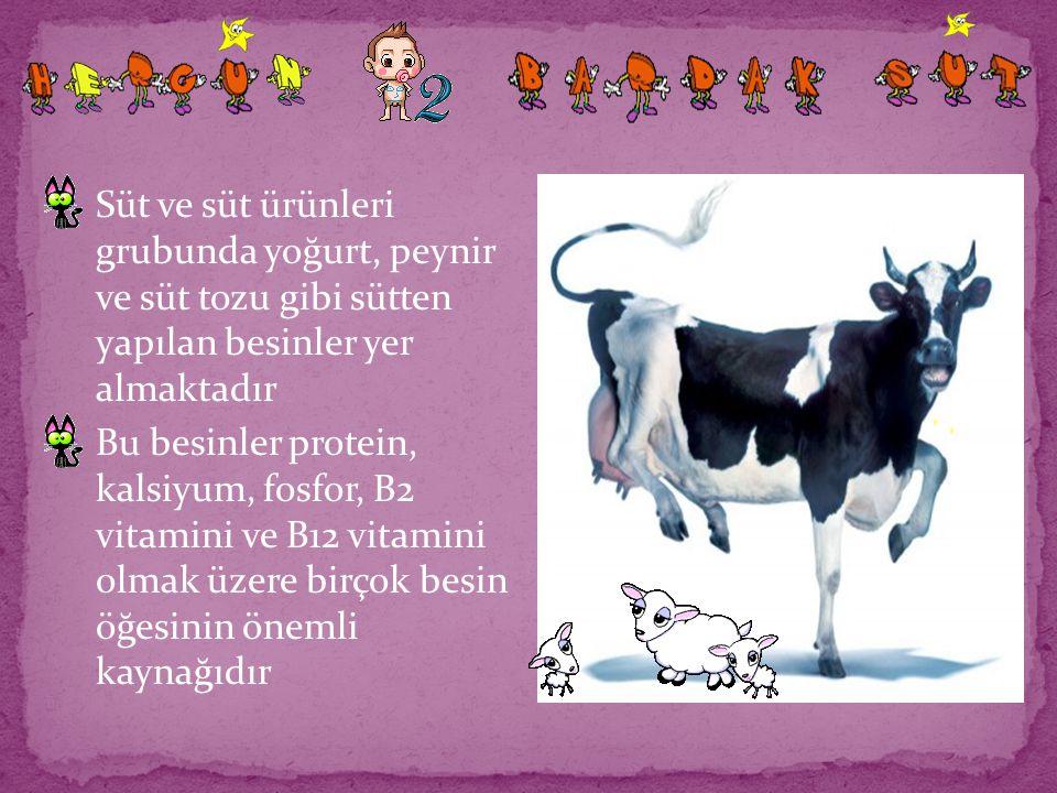 Süt ve süt ürünleri grubunda yoğurt, peynir ve süt tozu gibi sütten yapılan besinler yer almaktadır Bu besinler protein, kalsiyum, fosfor, B2 vitamini
