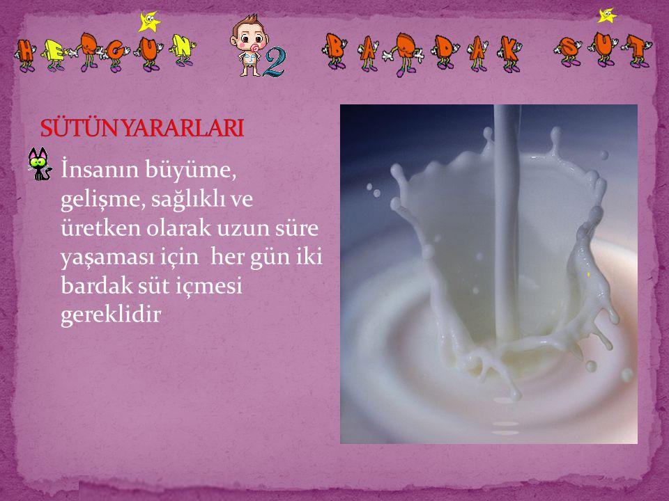 İnsanın büyüme, gelişme, sağlıklı ve üretken olarak uzun süre yaşaması için her gün iki bardak süt içmesi gereklidir