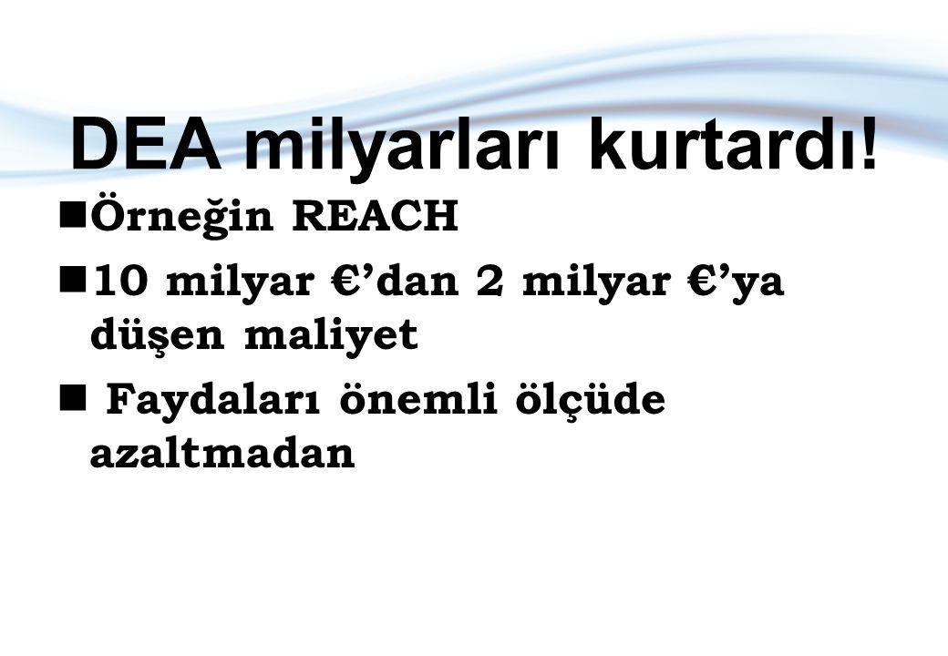 DEA milyarları kurtardı! Örneğin REACH 10 milyar €'dan 2 milyar €'ya düşen maliyet Faydaları önemli ölçüde azaltmadan