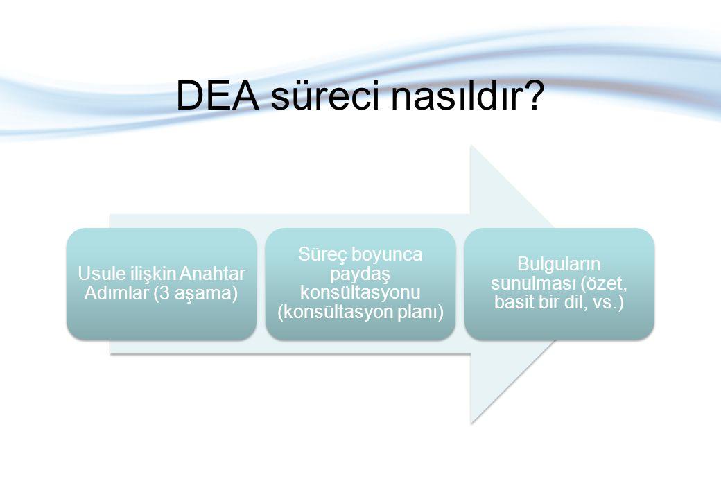 DEA süreci nasıldır? Usule ilişkin Anahtar Adımlar (3 aşama) Süreç boyunca paydaş konsültasyonu (konsültasyon planı) Bulguların sunulması (özet, basit