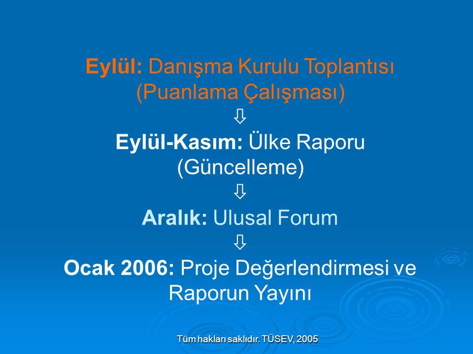 Tüm hakları saklıdır. TÜSEV, 2005 Eylül: Danışma Kurulu Toplantısı (Puanlama Çalışması)  Eylül-Kasım: Ülke Raporu (Güncelleme)  Aralık: Ulusal Forum