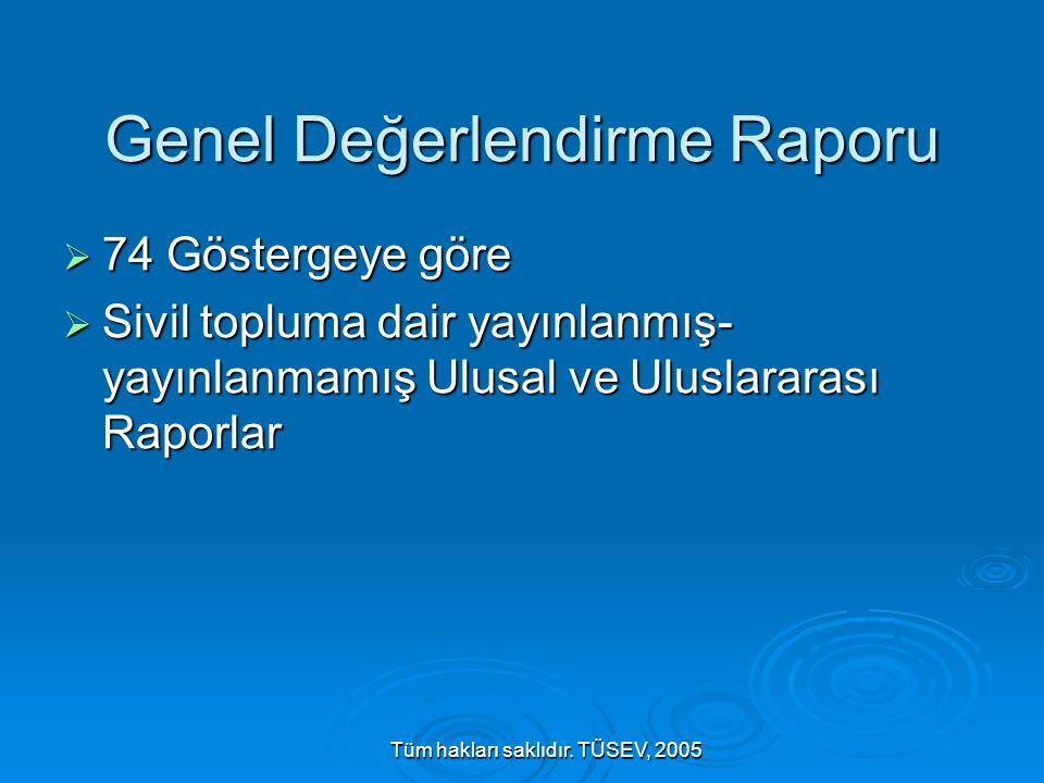 Tüm hakları saklıdır. TÜSEV, 2005 Genel Değerlendirme Raporu  74 Göstergeye göre  Sivil topluma dair yayınlanmış- yayınlanmamış Ulusal ve Uluslarara