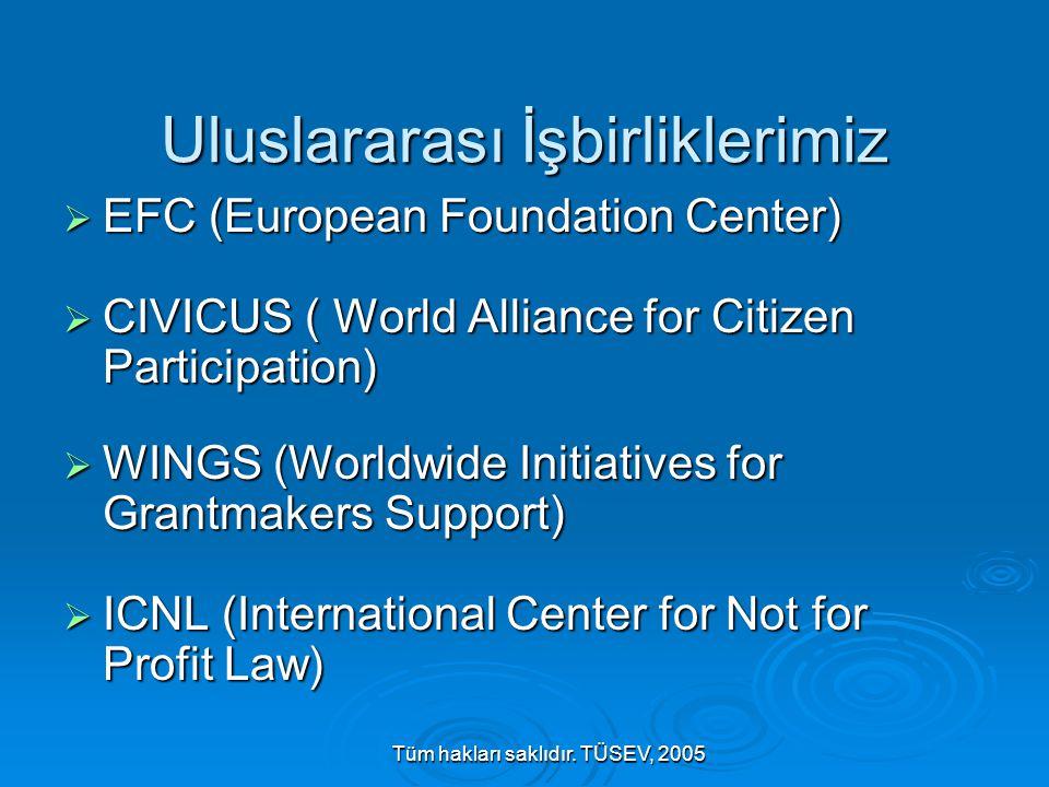 Tüm hakları saklıdır. TÜSEV, 2005 Uluslararası İşbirliklerimiz  EFC (European Foundation Center)  CIVICUS ( World Alliance for Citizen Participation