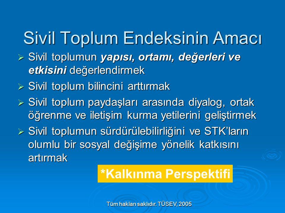 Tüm hakları saklıdır. TÜSEV, 2005 Sivil Toplum Endeksinin Amacı  Sivil toplumun yapısı, ortamı, değerleri ve etkisini değerlendirmek  Sivil toplum b