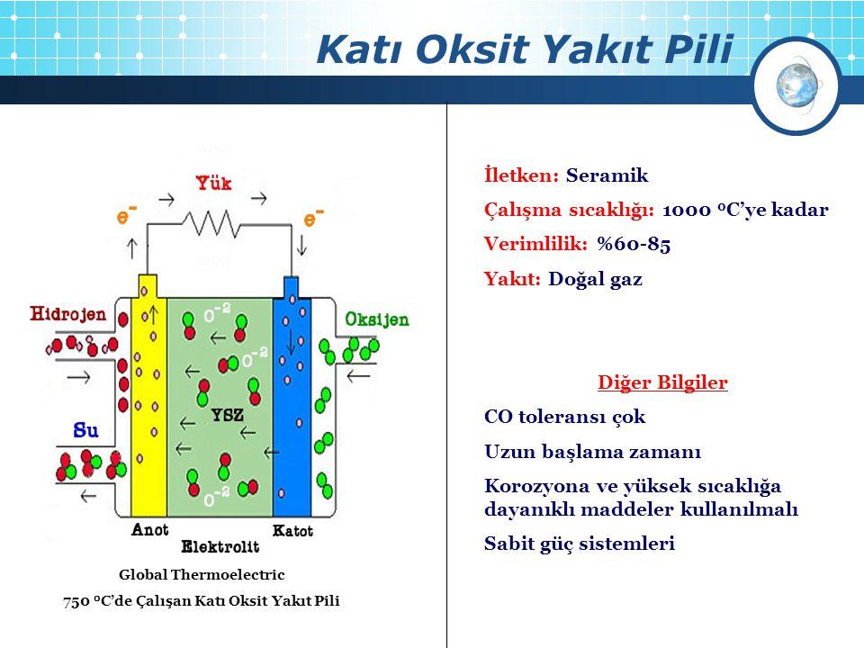Katı Oksit Yakıt Pili Global Thermoelectric 18 hücreli 1kW Katı Oksit Yakıt Pili Global Thermoelectric 750 0 C'de Çalışan Katı Oksit Yakıt Pili İletke