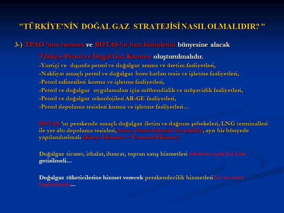TÜRKİYE'NİN DOĞAL GAZ STRATEJİSİ NASIL OLMALIDIR.