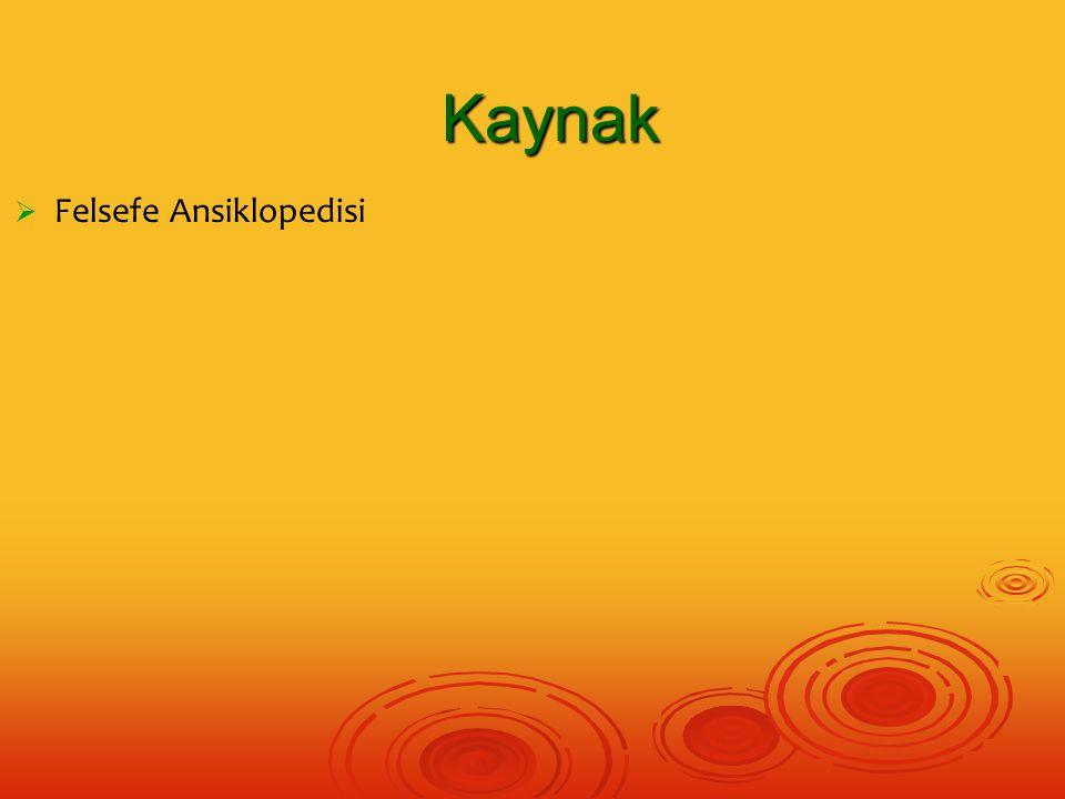   Felsefe Ansiklopedisi Kaynak