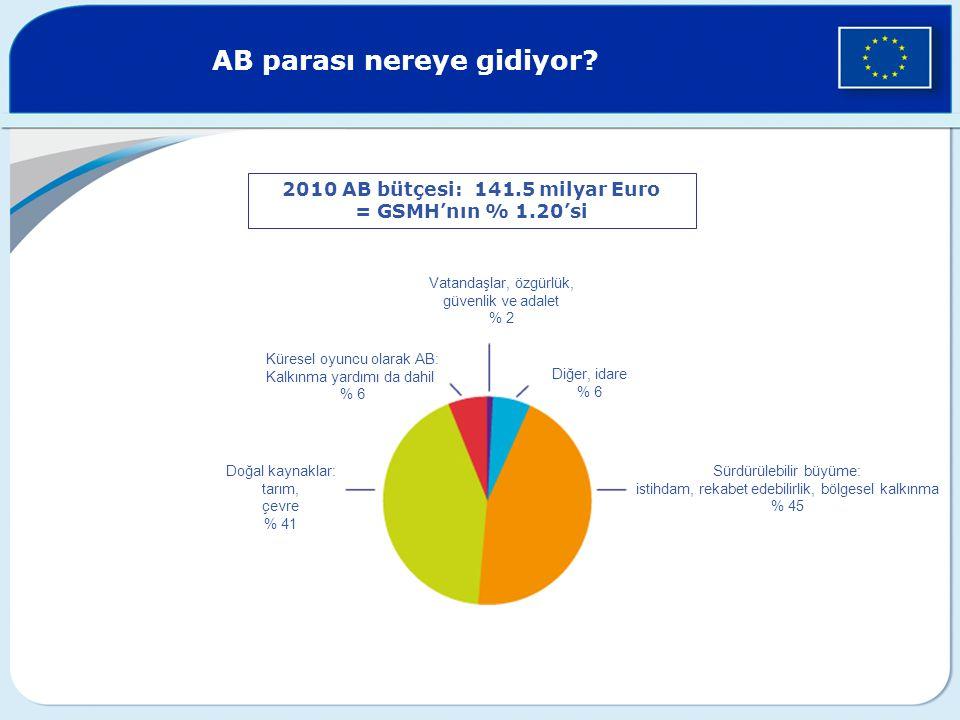 2010 AB bütçesi: 141.5 milyar Euro = GSMH'nın % 1.20'si Vatandaşlar, özgürlük, güvenlik ve adalet % 2 Diğer, idare % 6 Sürdürülebilir büyüme: istihdam