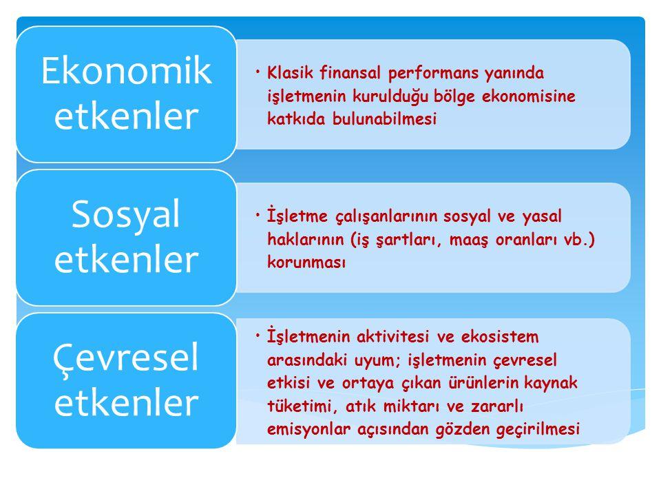 Klasik finansal performans yanında işletmenin kurulduğu bölge ekonomisine katkıda bulunabilmesi Ekonomik etkenler İşletme çalışanlarının sosyal ve yas