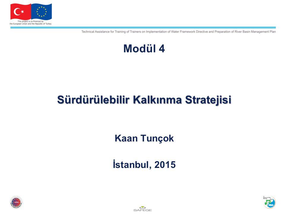 Modül 4 Sürdürülebilir Kalkınma Stratejisi Kaan Tunçok İstanbul, 2015