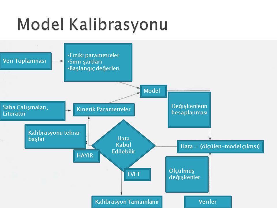 MODEL Hata Kabul Edilebilir Fiziki parametreler Sınır şartları Başlangıç değerleri Model Kinetik Parametreler Hata = (ölçülen-model çıktısı) HAYIR EVE