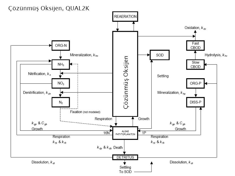 Çözünmüş Oksijen Çözünmüş Oksijen, QUAL2K