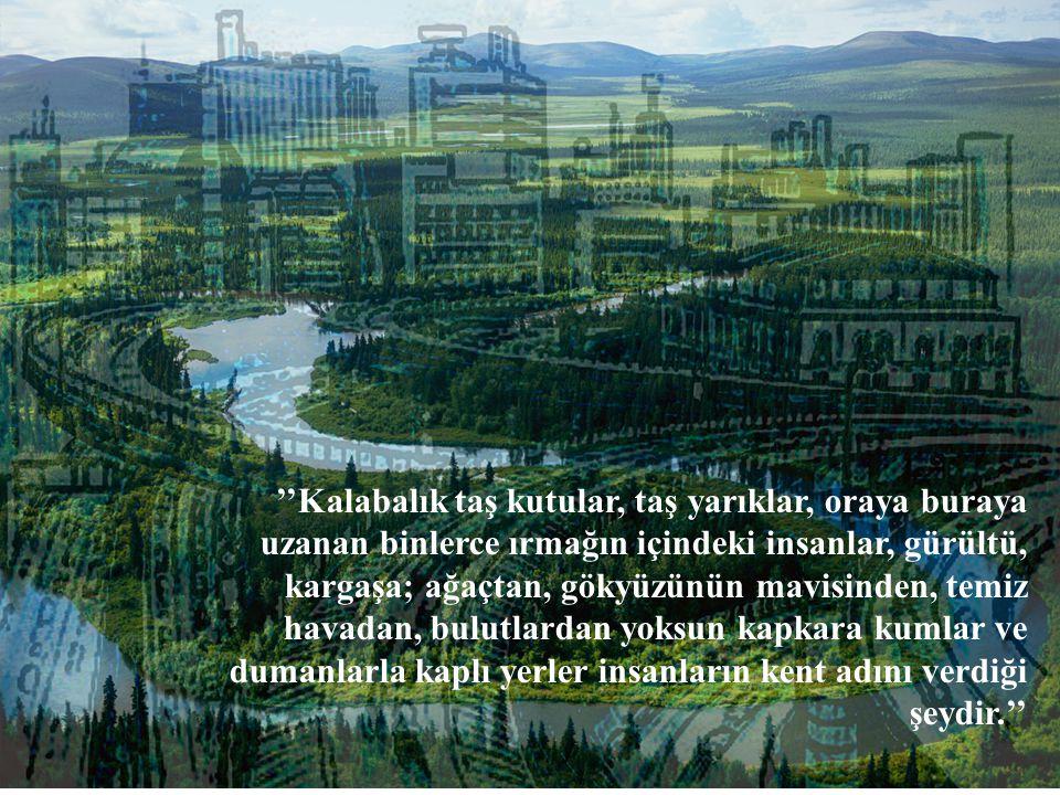 ''Kalabalık taş kutular, taş yarıklar, oraya buraya uzanan binlerce ırmağın içindeki insanlar, gürültü, kargaşa; ağaçtan, gökyüzünün mavisinden, temiz