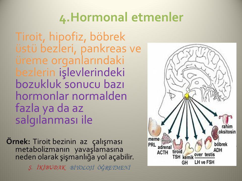 4.Hormonal etmenler Tiroit, hipofiz, böbrek üstü bezleri, pankreas ve üreme organlarındaki bezlerin işlevlerindeki bozukluk sonucu bazı hormonlar norm