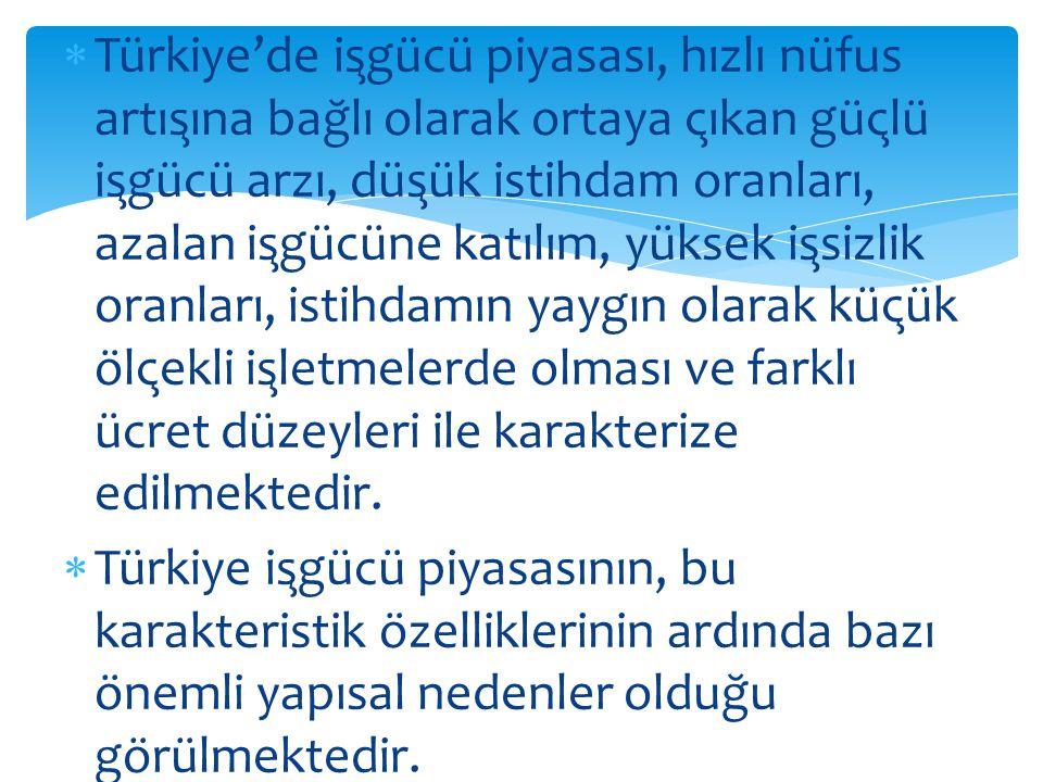  Türkiye'de işgücü piyasası, hızlı nüfus artışına bağlı olarak ortaya çıkan güçlü işgücü arzı, düşük istihdam oranları, azalan işgu