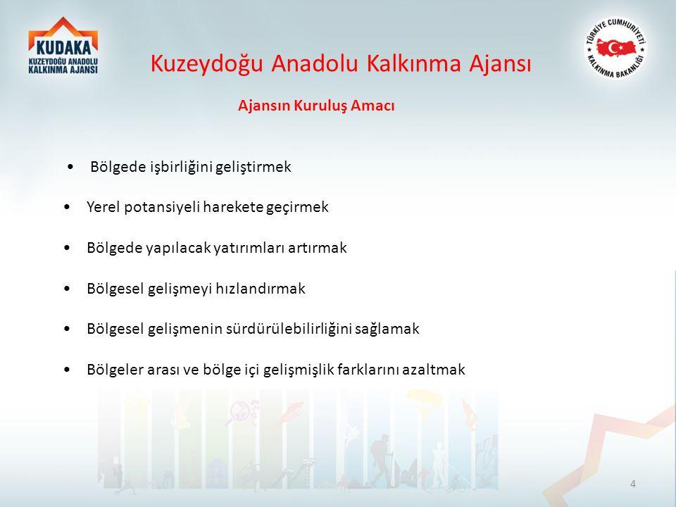 Yerel Kapasitenin Arttırılması Mali Destek Programı Kuzeydoğu Anadolu Kalkınma Ajansı