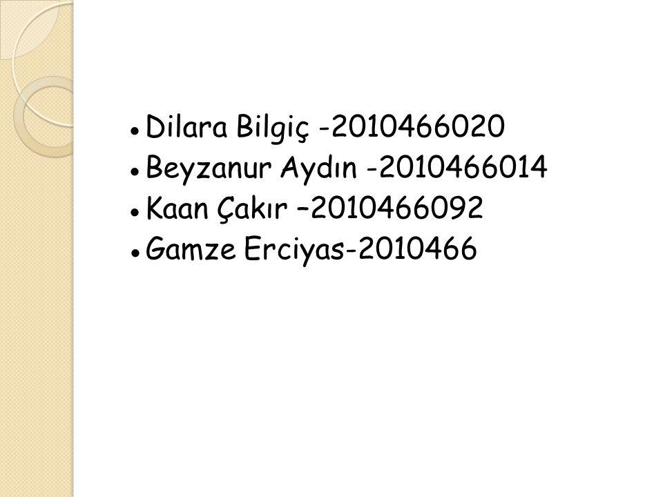 ●Dilara Bilgiç -2010466020 ●Beyzanur Aydın -2010466014 ●Kaan Çakır –2010466092 ●Gamze Erciyas-2010466