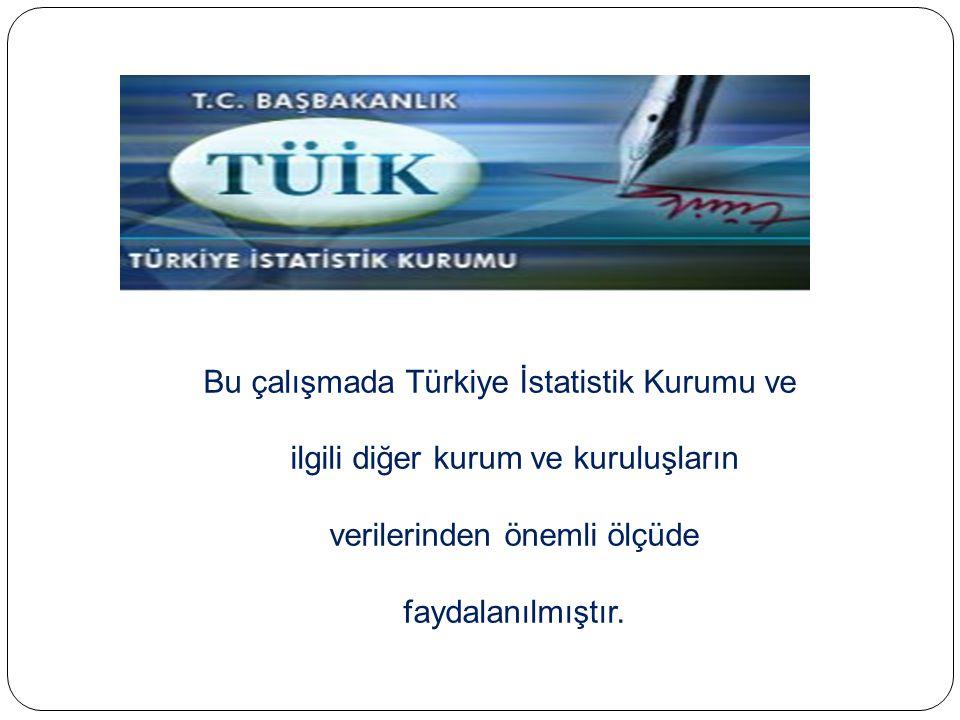 Bu çalışmada Türkiye İstatistik Kurumu ve ilgili diğer kurum ve kuruluşların verilerinden önemli ölçüde faydalanılmıştır.