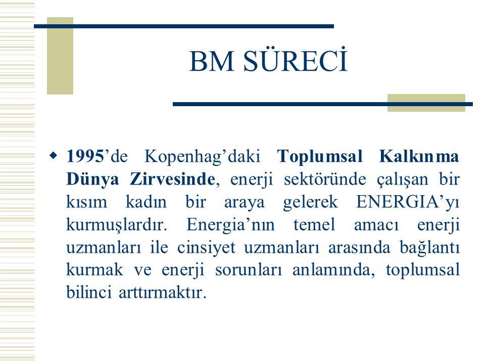 BM SÜRECİ  1995'de Kopenhag'daki Toplumsal Kalkınma Dünya Zirvesinde, enerji sektöründe çalışan bir kısım kadın bir araya gelerek ENERGIA'yı kurmuşla