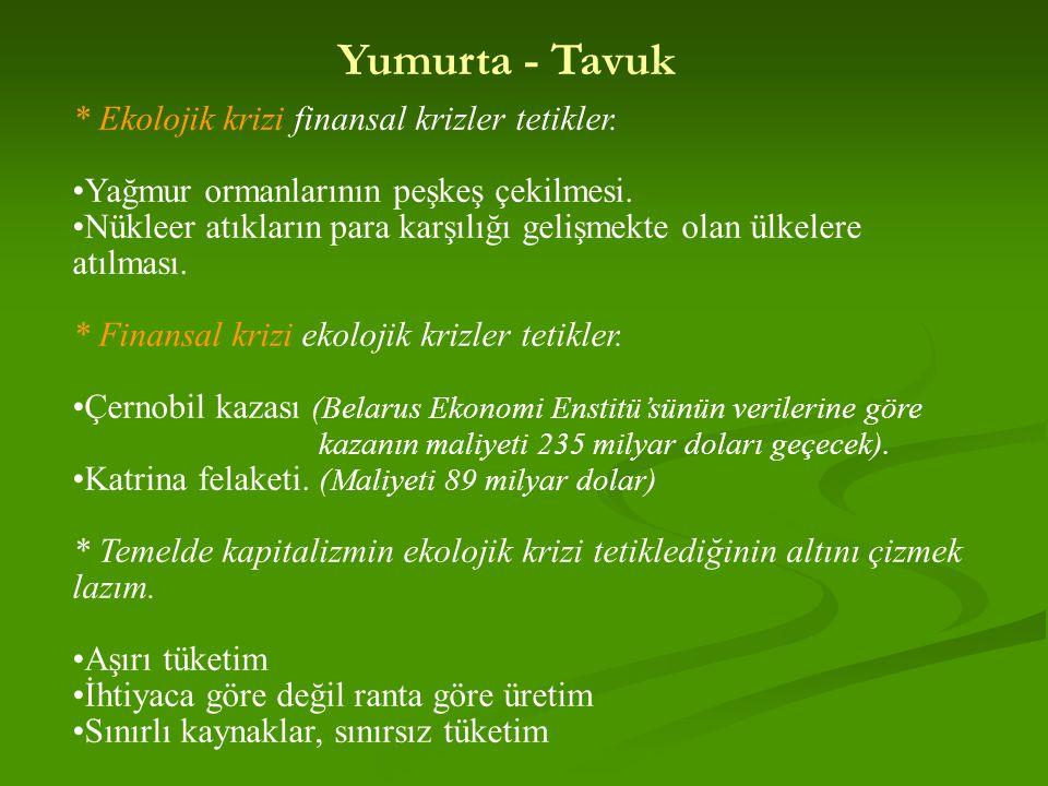 Yumurta - Tavuk * Ekolojik krizi finansal krizler tetikler.