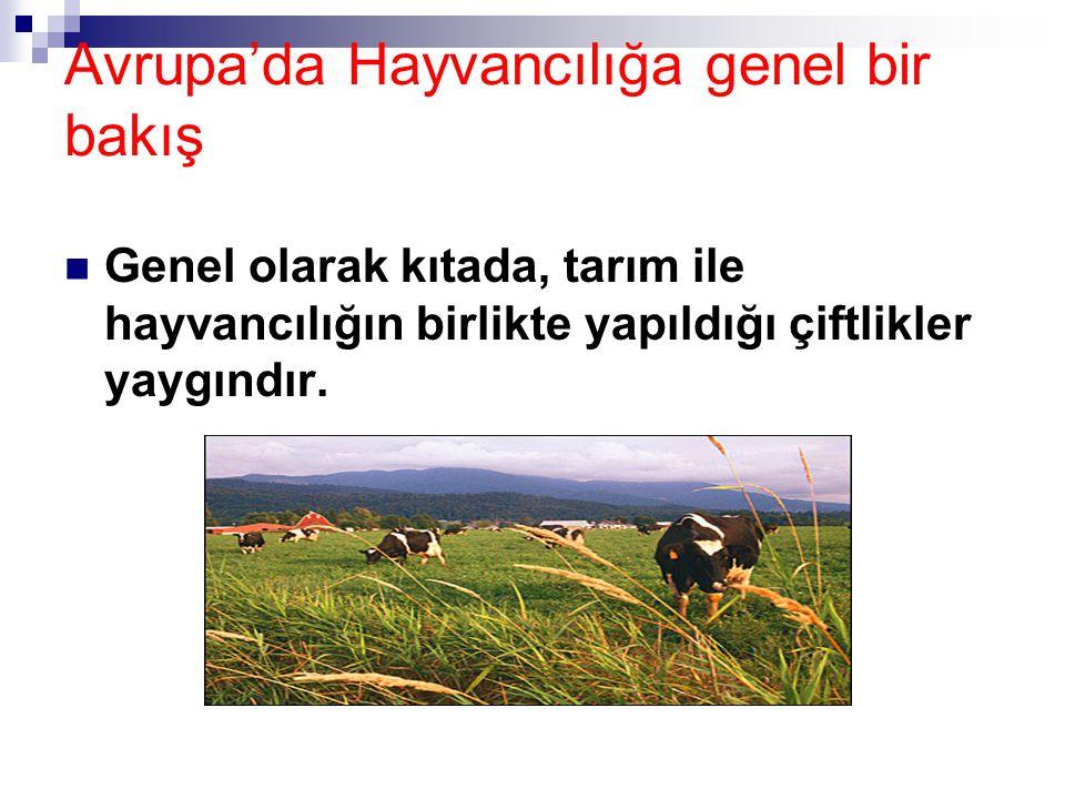Avrupa'da Hayvancılığa genel bir bakış Genel olarak kıtada, tarım ile hayvancılığın birlikte yapıldığı çiftlikler yaygındır.