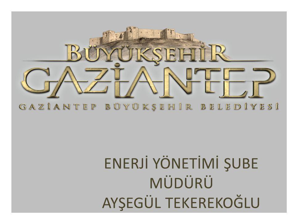 5.Türkiye Enerji Zirvesi 2010-2011 Ankara, 2012 Kayseri, 2013 Trabzon da düzenlenen, enerji, çevre ve ekonomi politikalarında söz sahibi olan siyasetçiler özel sektörün en seçkin temsilcileriyle iki gün boyunca birlikte olacağı V.