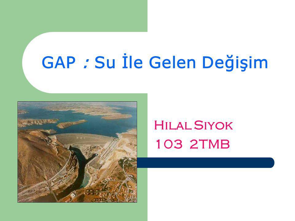 GAP : Su İle Gelen Değişim Hilal Siyok 103 2TMB